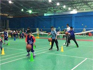 篮球训练营招生