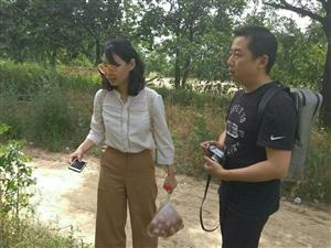 中国美术学院专家到陕州区考察