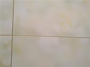 瓷砖美缝剂装修
