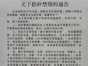 中央政法委中央综治委公安部印发通知要求集中打击整治农村赌博违法犯罪