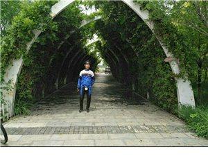 细雨蒙蒙伴我骑行天津东丽湖