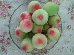 今年我家树上的桃子大丰收