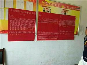 陕西安康汉滨区县河镇毛坝村选举法的新规