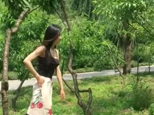 村里有个姑娘叫小芳