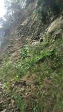【安全提示】江口观音庙跨方,茶园方向公路中断
