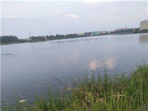 白大山水库