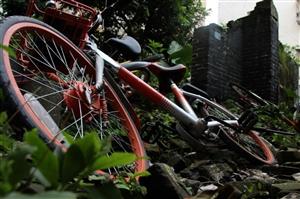 城中村共享单车之痛