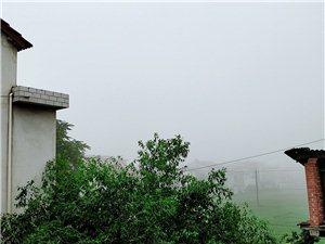 今早的白雾茫茫