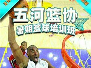 美高梅注册县篮球协会2018年暑假篮球培训班开始报名了。欢迎热爱篮球的6-18岁青少年积极参加!丢掉手机、