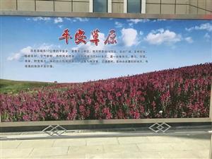 关山摄影佳美力宣张川无悔――一读阅《魅力张家川旅游》一书的感思《魅力张家川旅游》出版了