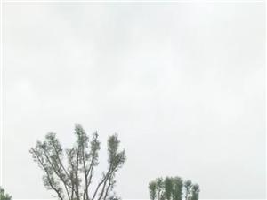 《雨落雄关》