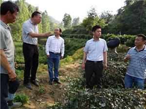 要实施集效农业,必须要有一支有技能的服务团队