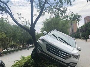 男人若是靠得住,汽车都能开上树,你看车上树了!