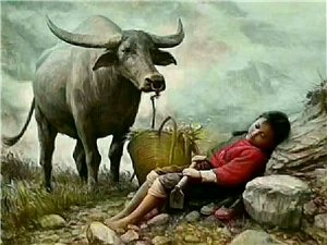 突然有种想放牛的感觉,没有生活压力,没有江湖套路,没有爱恨情仇,只关心我的??还在不在,以我的智商