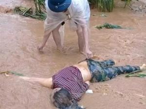 洪水猛如虎