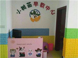小树苗早教中心急招幼师