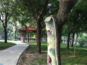 """""""望和""""、""""观海""""、""""知音""""――最美博城,""""亭""""好公园"""