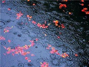 人生,有多少计较,就有多少痛苦;有多少宽容,就有多少欢乐。痛苦与欢乐都是心灵的折射,就像镜子里面有什
