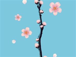 【叶子的春夏秋冬】春天你经不住风雨的诱惑拼命地从枝头冒发颤抖着你那幼稚的嫩芽占据在梢尖挺