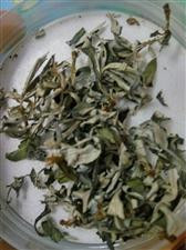 家乡也产茶叶了