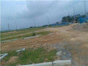 兴业县环城路什么时候建好?