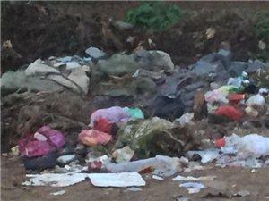 温泉东夼村存在的垃圾堆,一直没有人管!