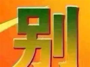 天柱首��多功能精品酒店式公寓,��字�牵��F房即�I即�b修入住,�粜�37-514平,�F在正式��诱J�I,�F在