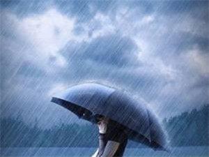 清晨,天空下起了�d�d�雨,一片花像只蝴蝶�p盈地落在肩上,我小心地托起。它很小,米�S色的花瓣自然地卷曲