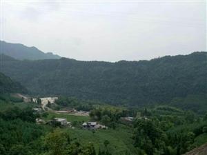 毓秀苗族乡鲵源村六组井场占用土地几个月了那个时候才打款下来