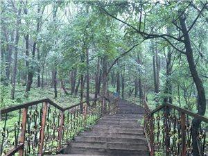 英杰雨后的山路