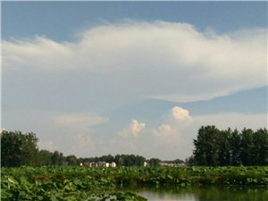 天气真是热白云也急着出来凉快了