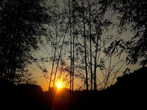 日出,,,,,
