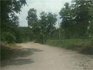 为何富饶村11组就没有权利享受组组通公路福利