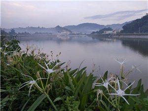 傍晚,恍如仙境的榕江南河畔