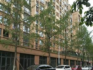 中西街4室2厅1卫62万元