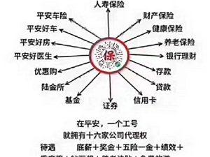 中国平安综合金融招业务员