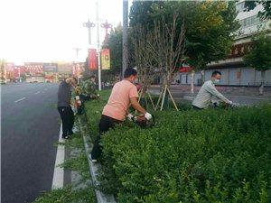 这几个同志也真不容易,冒高温,战争酷暑!修剪绿化树,威尼斯人注册的美好形象与他们也是分不开的,你们辛苦了!!
