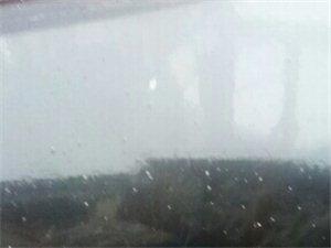中国首例�D�D潢川下雨下白石子(大米哥世界奇闻趣事播报)