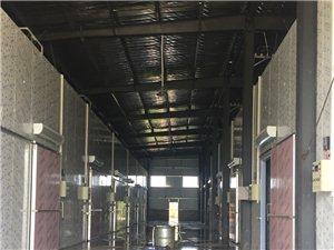 普集镇义老村北200米有新建千吨猕猴桃气调库对外招