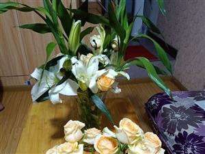 美女客户,送来的鲜花,非常感谢