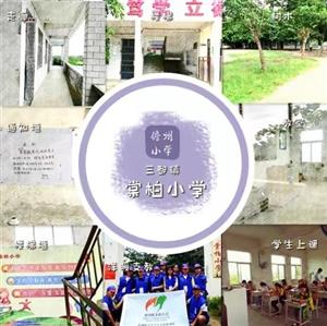 学校简讯,第一站。棠柏小学。