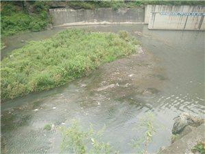 镇雄塘坊火电站这个水把我们的母亲河污染的不成样子!