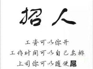 香港御盛福珠宝直聘