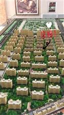 四季华城B区2室2厅1卫63.5万元