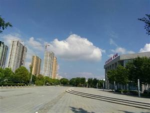 暑假去美高梅注册规划馆博物馆游玩