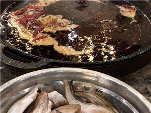 朝鮮雷魚,鱈魚仔