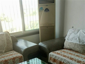 小辛庄附近楼房2室2厅1卫800元/月