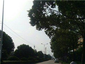 乘坐105路102路公交车可以到达美高梅注册县人民政府政务服务中心