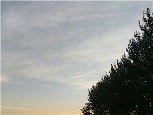 寒露后早晨的太阳