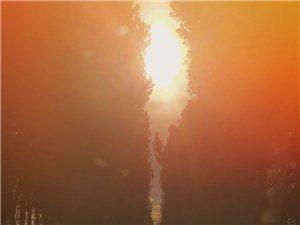 【玻璃居作品】金色的黎明
